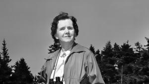 La Mujer en la Ciencia   Rachel Carson
